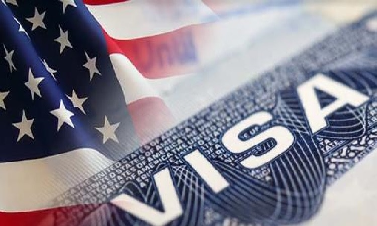 Image result for government visa united states